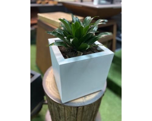 Вазон из бетона для растений, светлый (28*28*28)