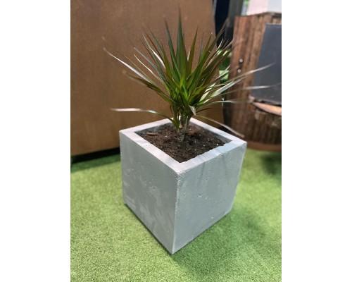Вазон из бетона для растений, серый (28*28*28)